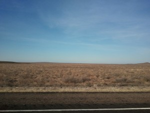 The west Texas landscape